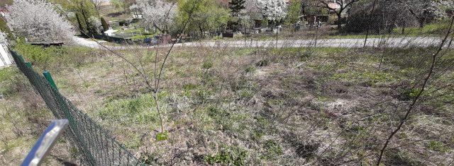 Predám záhradu v Hrašovíku, Kočice vzd. 9 km