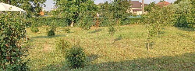 Pozemok na predaj 1000 m2 Sokoľany, Košice